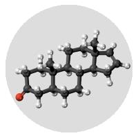 Androstenone Molecule